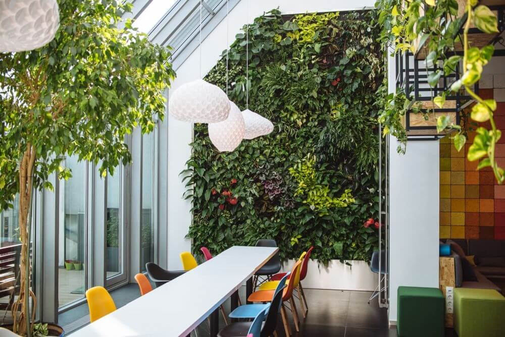 Create A Healthier Office With Plants Merit Interiors